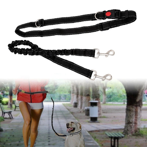 Elasticated Nylon Running & Hiking Lead & Waistband for dogs