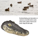 Alligator Head Floating Pond Decoy