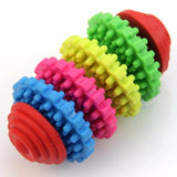 Multi Spinwheel Tooth Cleaning Rubber Chomper - 4 Sizes