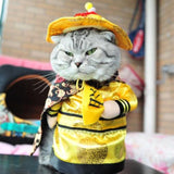 Emperor Fancy Dress Outfit For Cats & Small Dogs