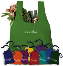Load image into Gallery viewer, ChicoBag - Stuffable Reusable Bag
