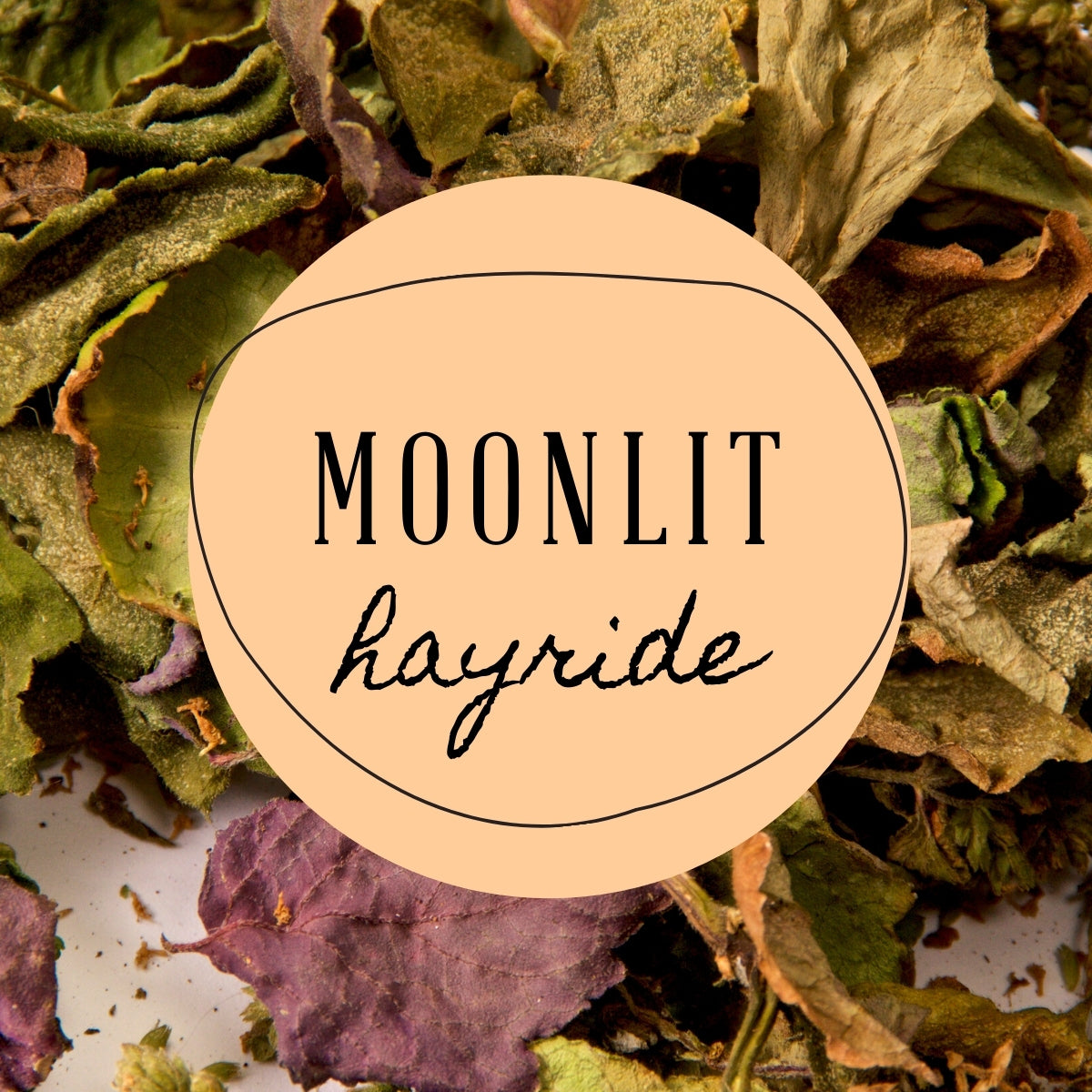 Moonlit Hayride Scented Candle