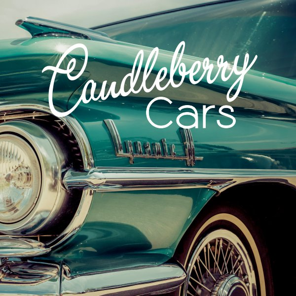 Strong, Lasting, Car Air Fresheners by Candleberry Candles