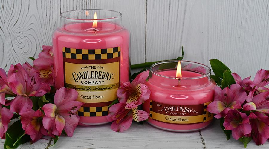 Cactus Flower™, 10 oz. Jar, Scented Candle 10 oz. Small Jar Candle The Candleberry Candle Company