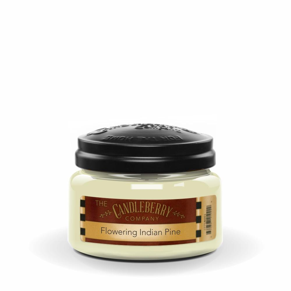 Flowering Indian Pine, 10 oz. Jar, Scented Candle 10 oz. Small Jar Candle The Candleberry Candle Company