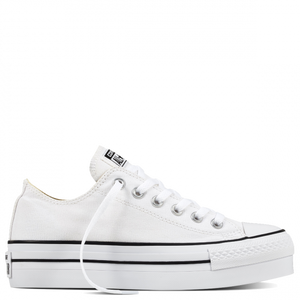 converse ct as platform - white - Buy Online at Northern Shoe Store