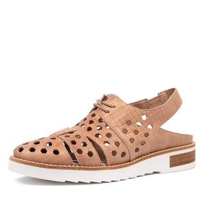 Django&Juliet Robbins - Latte- Buy Online at Northern Shoe Store