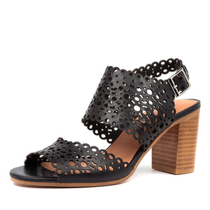 Django&Juliet Venie - Black/Nat - Buy Online at Northern Shoe Store