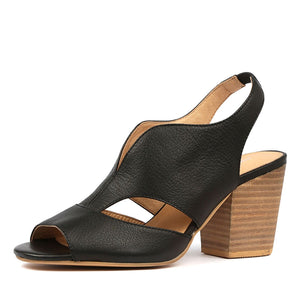 Django&Juliet Werner - Black - Buy Online at Northern Shoe Store
