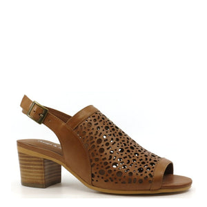 Django & Julliette  Bert - Dark Tan - Buy Online at Northern Shoe Store