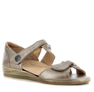 Ziera Doxie - Greige - Buy Online at Northern Shoe Store