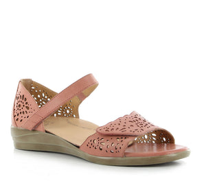 Ziera Dusty - Toasted - Buy Online at Northern Shoe Store