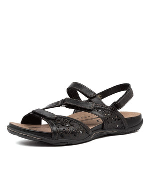 Earth Maui - Black - Buy Online at Northern Shoe Store