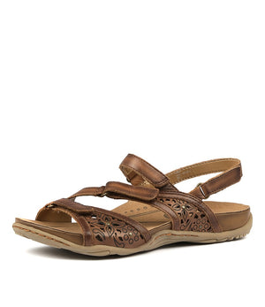Earth Maui - Sand Brown - Buy Online at Northern Shoe Store