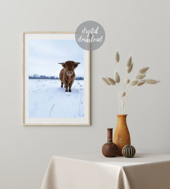 Highland Cow Print; Digital Download; Cow in Snow; Fluffy Cow 13