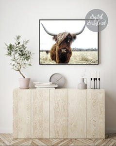Highland Cow Print; Fluffy Cow Photo; Digital Download 3