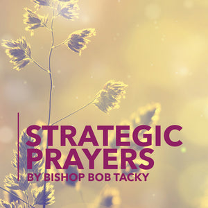 Strategic Prayers - 4 CD set