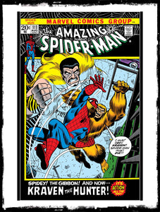 AMAZING SPIDER-MAN - #111 10TH ANNIVERSARY ISSUE (1972 - FN/FN+)