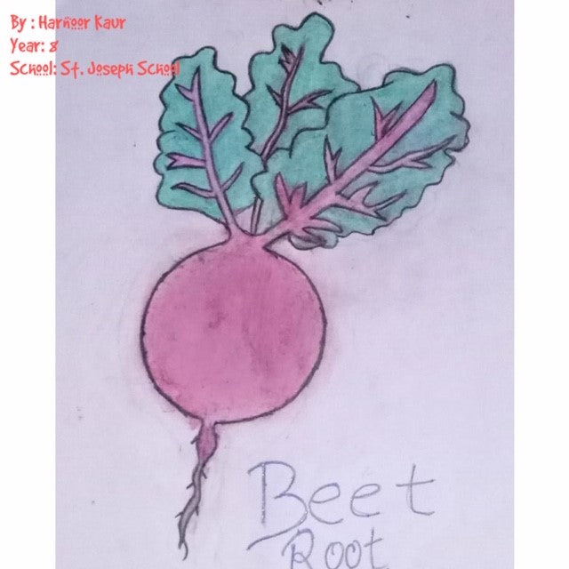 Beetroot each