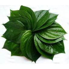 Betel Leaves / Panka Patta 10leaves