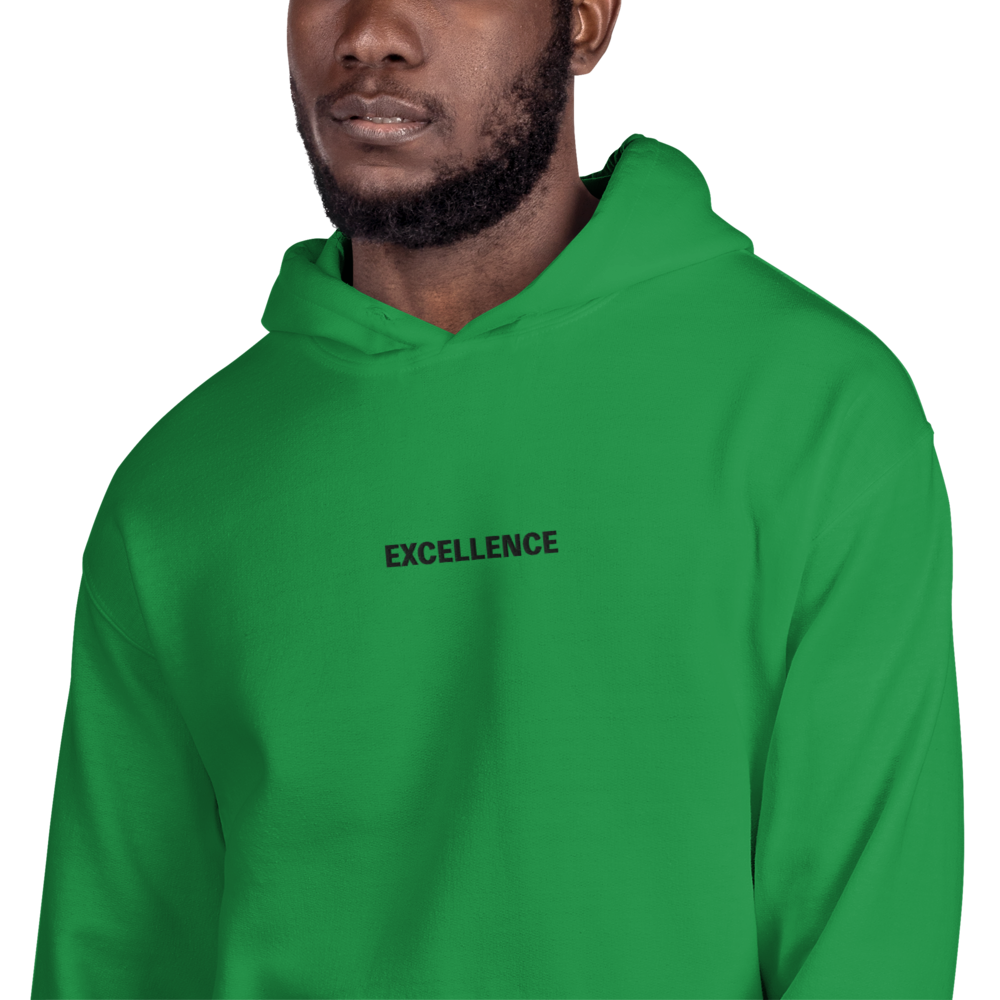 Embroidered EXCELLENCE hoodie