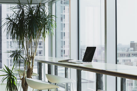 Office desk with natural light