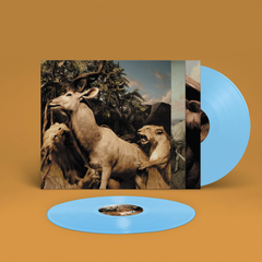 Interpol ‎– Our Love To Admire Sky Blue Colour Vinyl Record