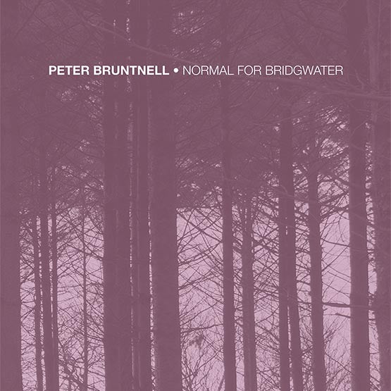 Peter Bruntnell - Normal For Bridgwater (RSD 2020 Drop One) 180g White Colour Vinyl Record