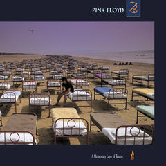 Pink Floyd ‎– A Momentary Lapse Of Reason 180g Vinyl Record Album
