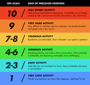 The Rating of Perceived Exertion (RPE) Scale