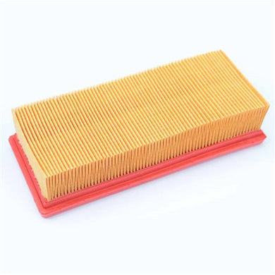 Triumph Daytona, Speed Triple, Sprint and Tiger Models Air Filter - T2201246