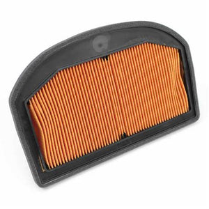 Triumph Tiger Explorer Models Air Filter - T2209555