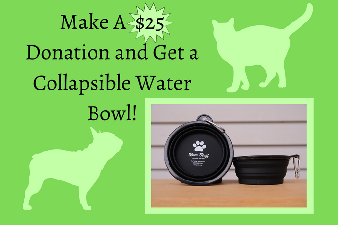 $25 Donation w/ Collapsible Bowl
