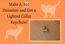 Load image into Gallery viewer, $50 Donation w/ Lighted Collar Keychain