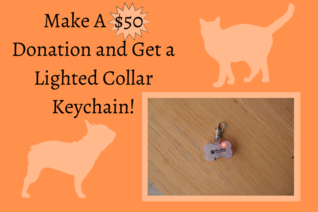 $50 Donation w/ Lighted Collar Keychain