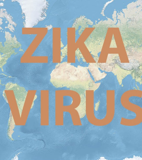 WHAT IS THE CURRENT SITUATION OF ZIKA VIRUS?