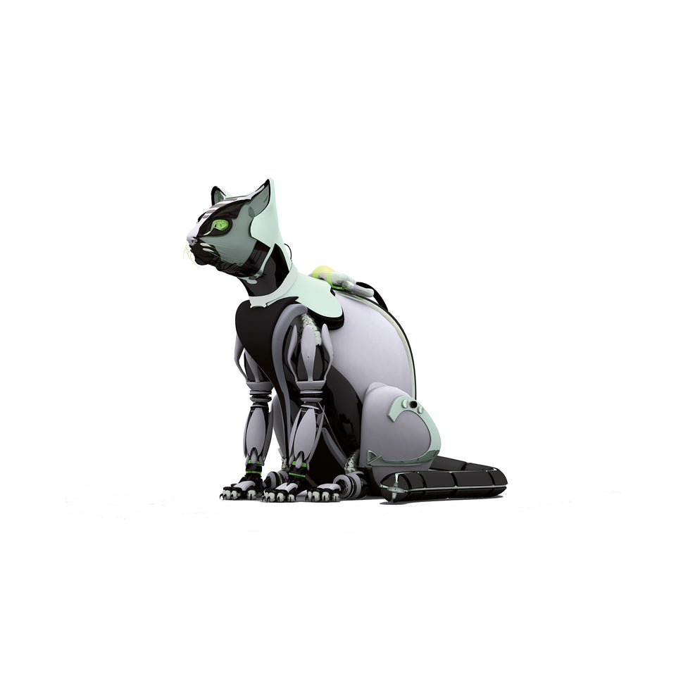 collections/radarcan-cat-gato-1920x1920.jpg