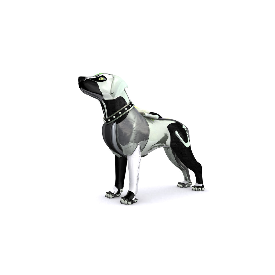 collections/radarcan-dog-perro-1920x1920.jpg