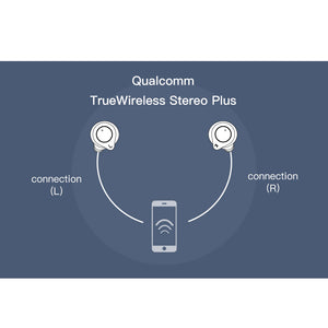 TWS True Wireless Bluetooth 5.0 Earphone CVC8 Noise-Cancellation With Super Bass HD Mic headset earbuds