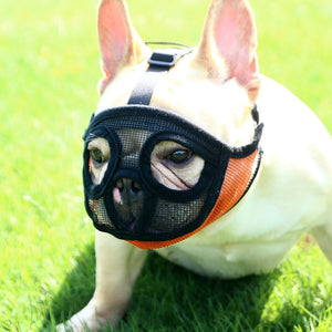 HOOPET Pet Dog Mouth Mask Dogs Muzzle Anti-bite Masks For Dog Products Pets Accessories