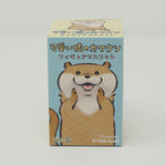 Kawauso Kawaii Otter Blind Box - Kitan Club