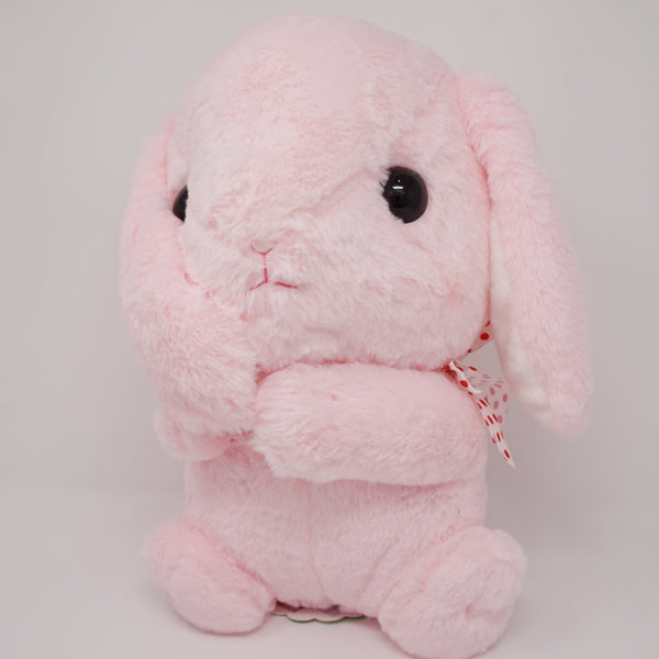 Amuse Pote Usa Loppy Bunny Holding Ear Big Plush