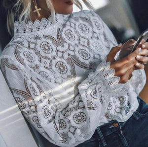 Elegant Lace Embroidery Long Sleeve Top