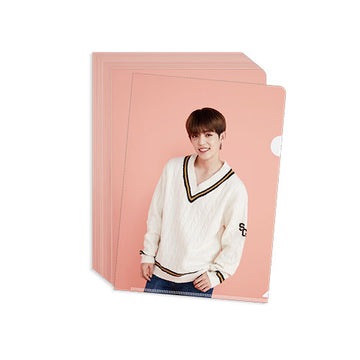 [SEVENTEEN] Clear File (PINK)