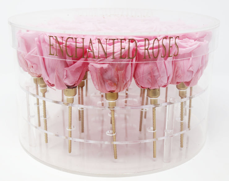 Enchanted Rose Collection - Sakura Pink Roses
