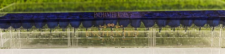 Romance Luxury Collection - Royal Blue Roses