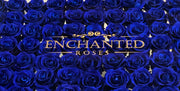 Love Story Luxury Collection - Royal Blue