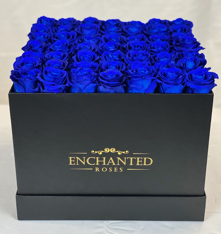 Large Classic Black Square Box - Royal Blue