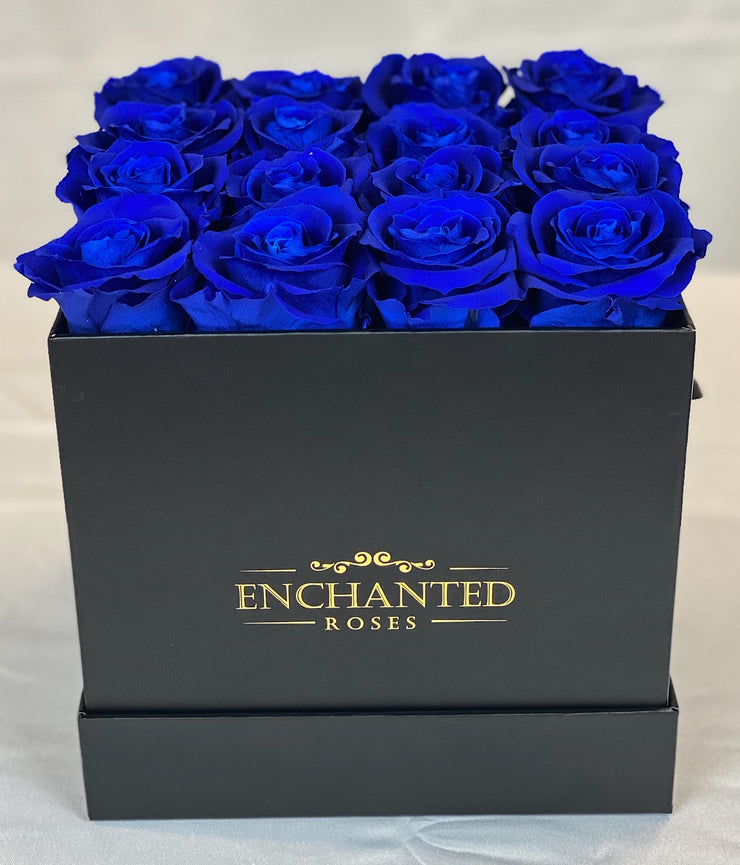 Small Classic Black Square Box - Royal Blue