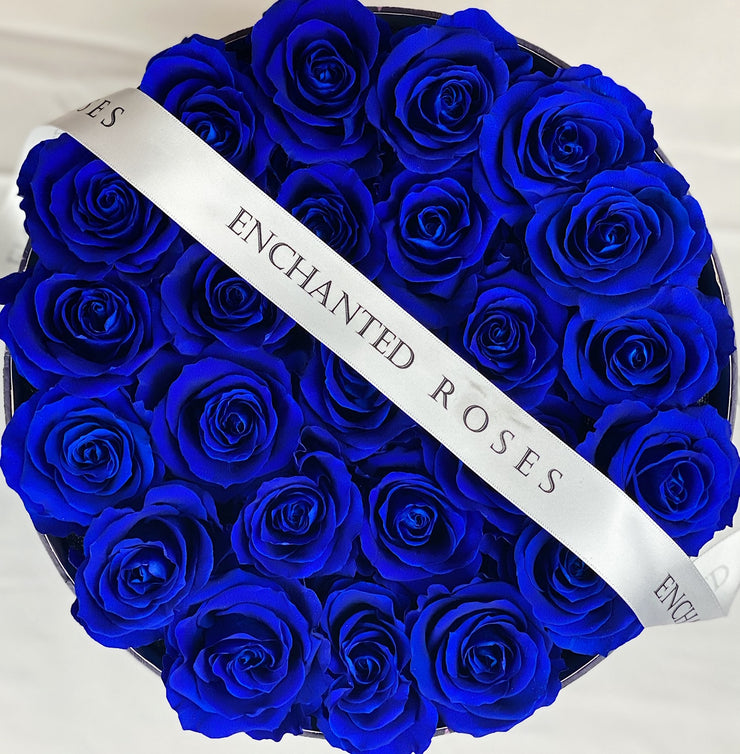 Wish Box Collection - Royal Blue
